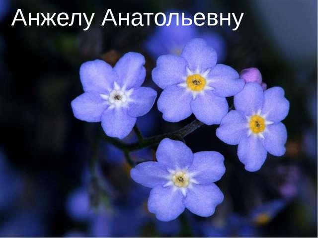 Анжелу Анатольевну