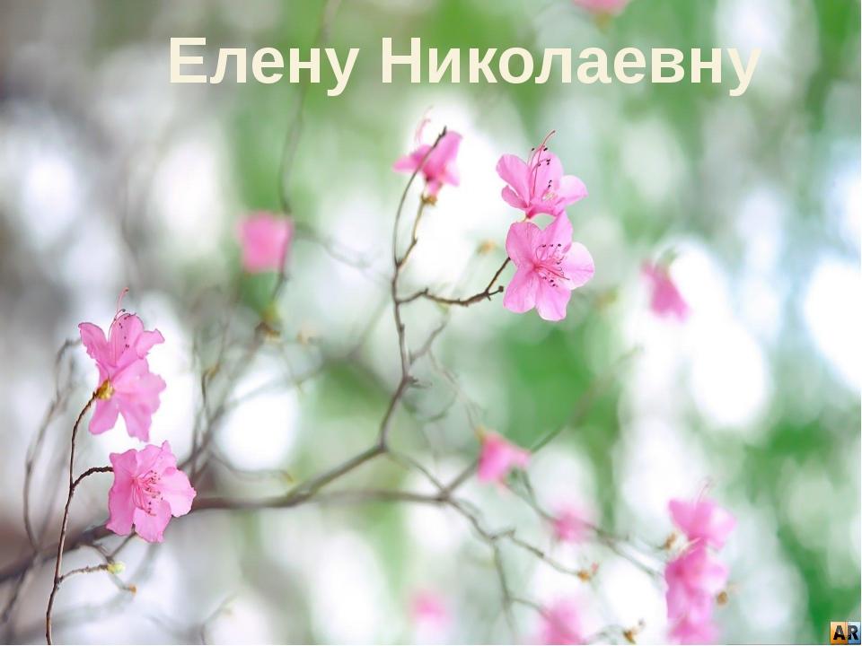 Елену Николаевну