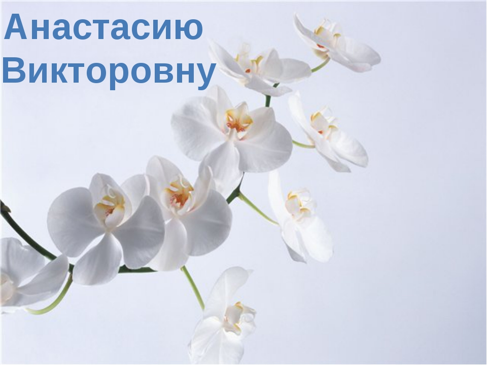 Анастасию Викторовну