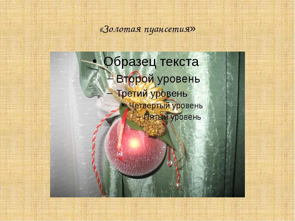 «Золотая пуансетия» Головинова Наири Сергеевна МОБУ гимназия № 44 г.Сочи