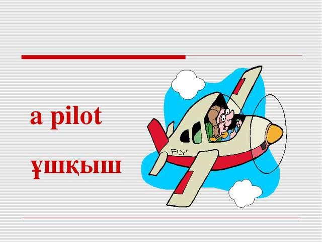 a pilot ұшқыш