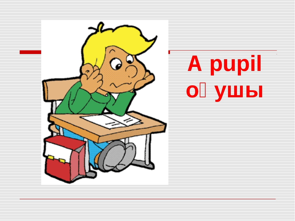 A pupil оқушы