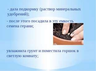- дала подкормку (раствор минеральных удобрений); увлажнила грунт и поместила