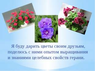 Я буду дарить цветы своим друзьям, поделюсь с ними опытом выращивания и знан