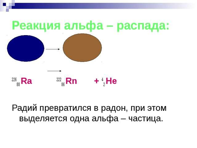 Реакция альфа – распада: 22688 Ra 22286 Rn + 42 Не Радий превратился в радон,...