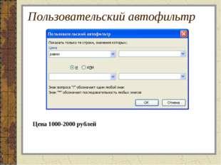 Пользовательский автофильтр Цена 1000-2000 рублей