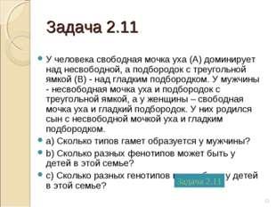 Задача 2.11 У человека свободная мочка уха (А) доминирует над несвободной, а