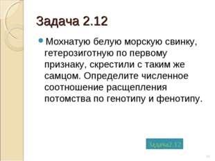 Задача 2.12 Мохнатую белую морскую свинку, гетерозиготную по первому признаку