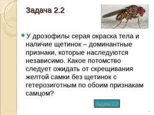 Задача 2.2 У дрозофилы серая окраска тела и наличие щетинок – доминантные при