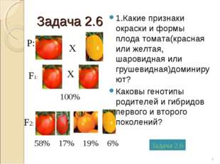 Задача 2.6 1.Какие признаки окраски и формы плода томата(красная или желтая,