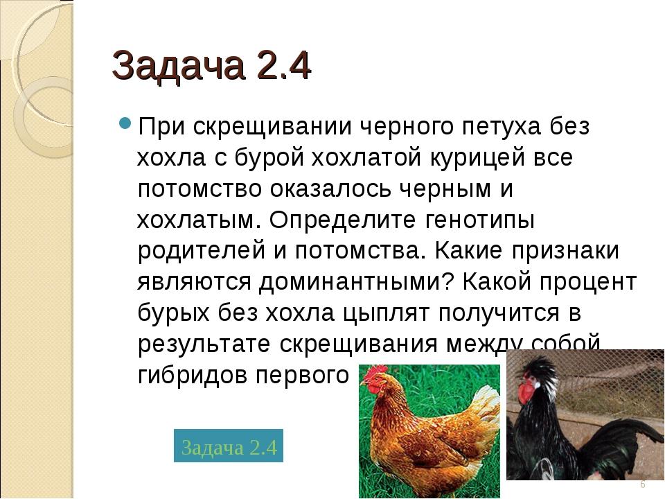 Задача 2.4 При скрещивании черного петуха без хохла с бурой хохлатой курицей...