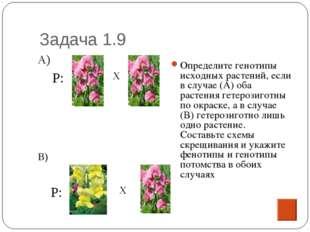 Задача 1.9 Определите генотипы исходных растений, если в случае (А) оба расте