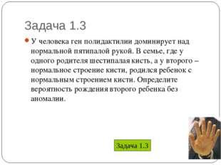 Задача 1.3 * У человека ген полидактилии доминирует над нормальной пятипалой