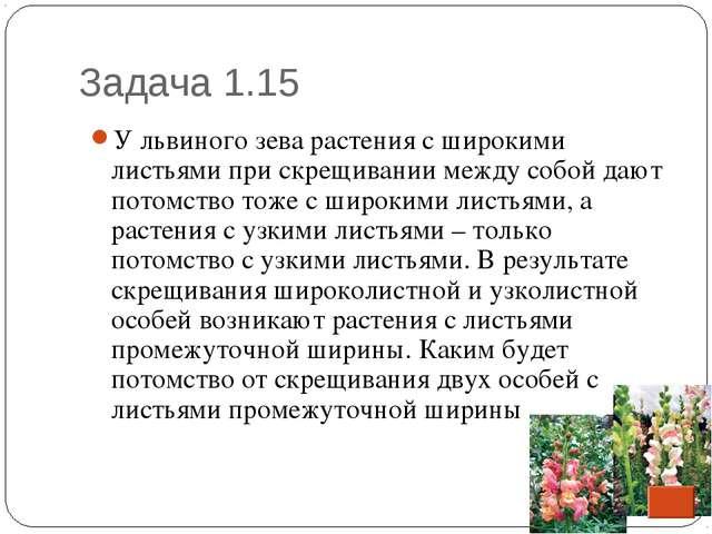 Задача 1.15 * У львиного зева растения с широкими листьями при скрещивании ме...