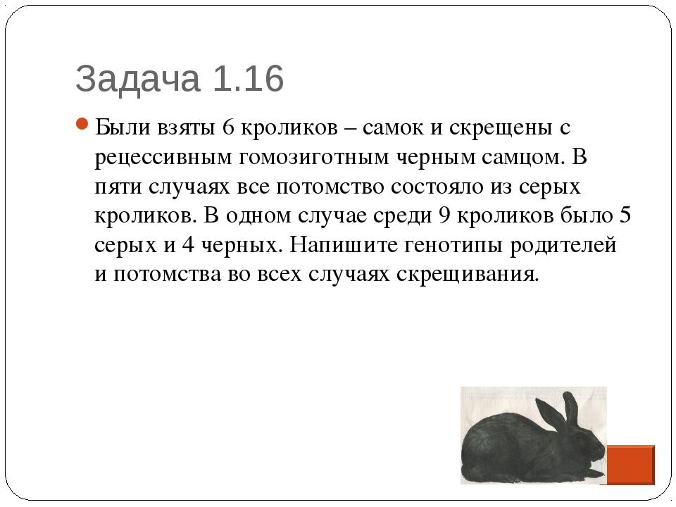 Задача 1.16 * Были взяты 6 кроликов – самок и скрещены с рецессивным гомозиго...