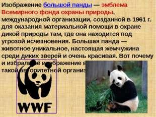 Изображение большой панды — эмблема Всемирного фонда охраны природы, междунар