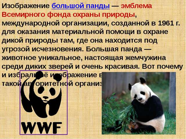 Изображение большой панды — эмблема Всемирного фонда охраны природы, междунар...