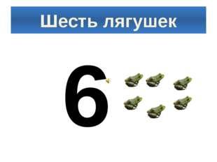 Шесть лягушек 6