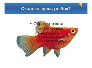 Сколько здесь рыбок?