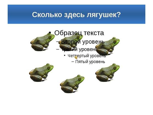Сколько здесь лягушек?