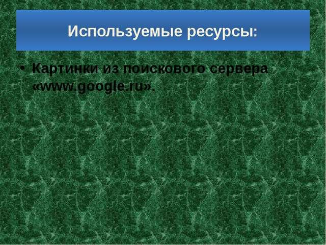 Используемые ресурсы: Картинки из поискового сервера «www.google.ru».