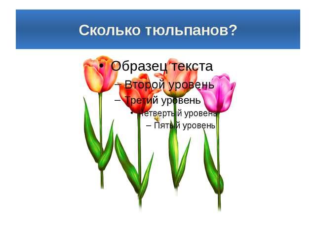 Сколько тюльпанов?