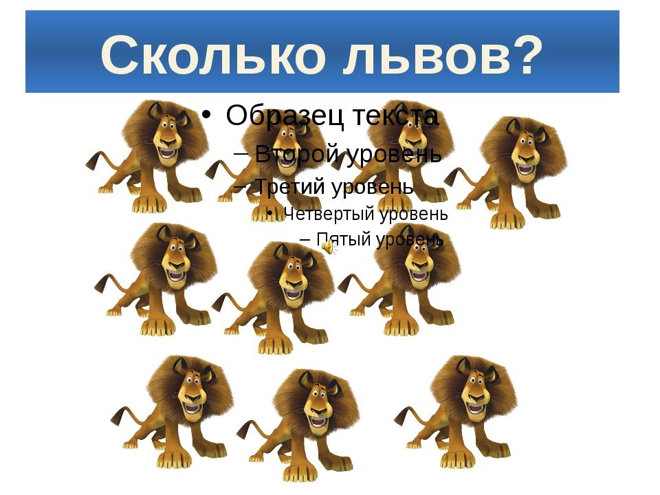 Сколько львов?