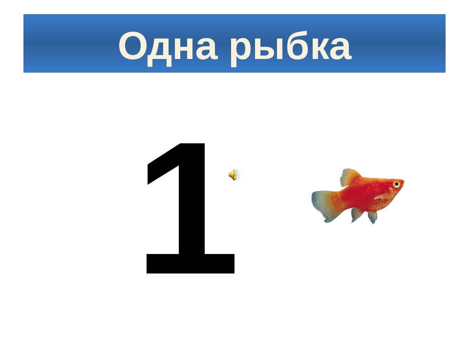 Одна рыбка 1