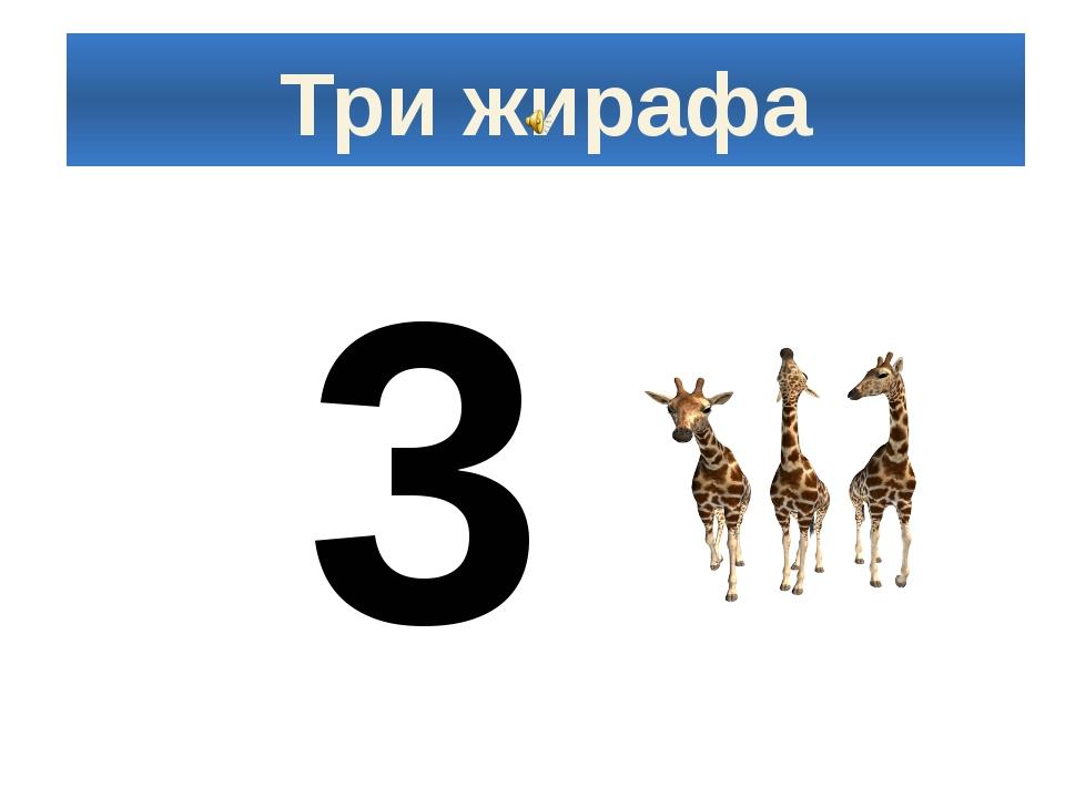 Три жирафа 3