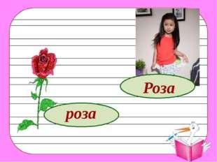 роза Роза