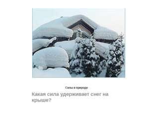 Силы в природе Какая сила удерживает снег на крыше?