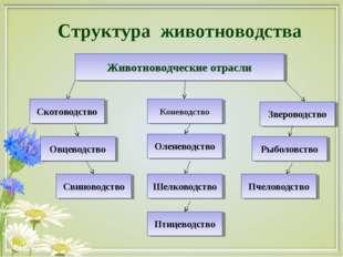 Структура животноводства Скотоводство Животноводческие отрасли Овцеводство Св