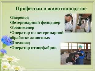 Профессии в животноводстве Зверовод Ветеринарный фельдшер Зооинженер Оператор