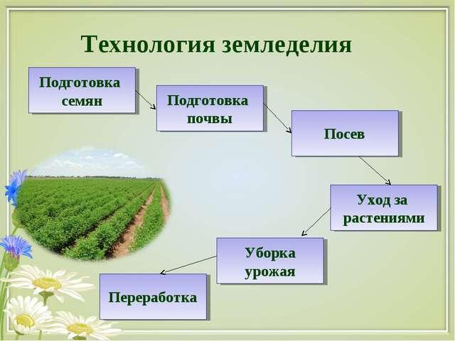 Технология земледелия Подготовка семян Подготовка почвы Посев Уход за растени...