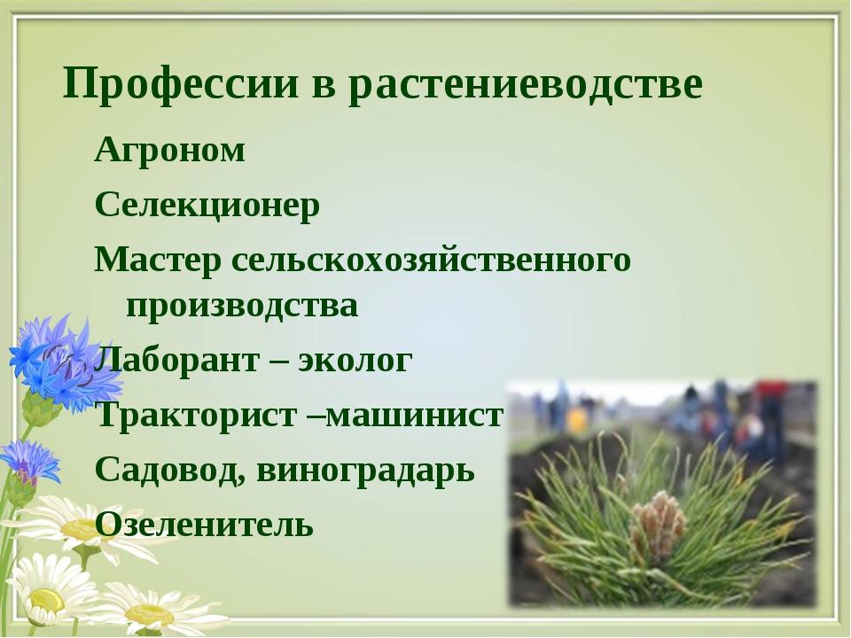 Профессии в растениеводстве Агроном Селекционер Мастер сельскохозяйственного...