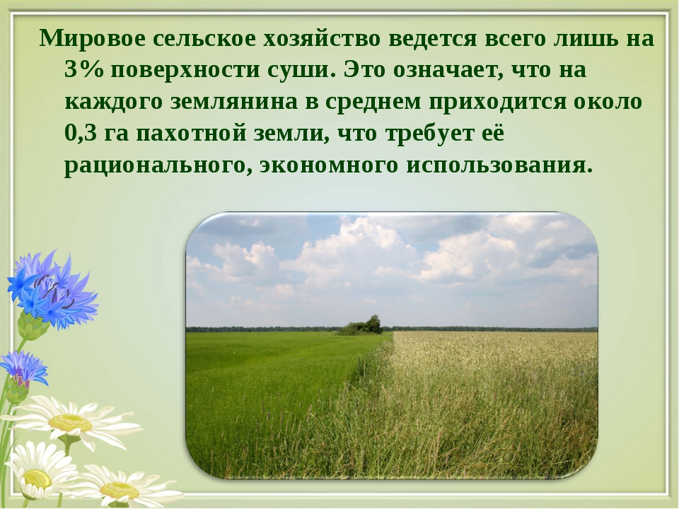 Мировое сельское хозяйство ведется всего лишь на 3% поверхности суши. Это озн...