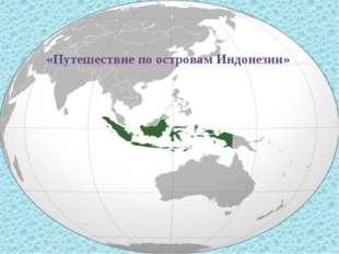 «Путешествие по островам Индонезии»