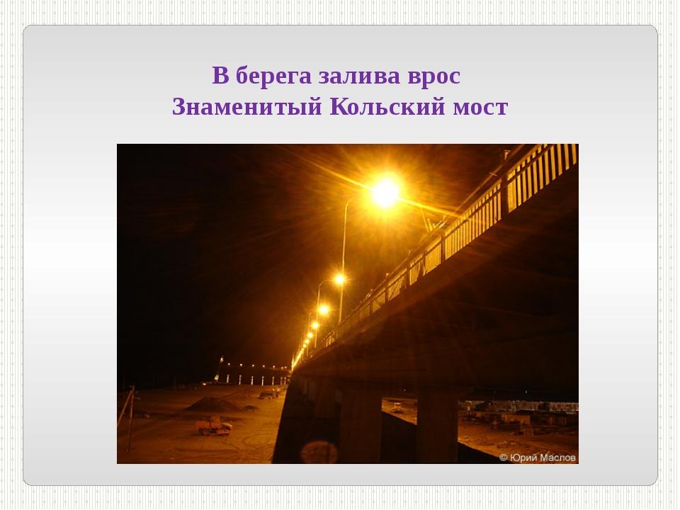 В берега залива врос Знаменитый Кольский мост