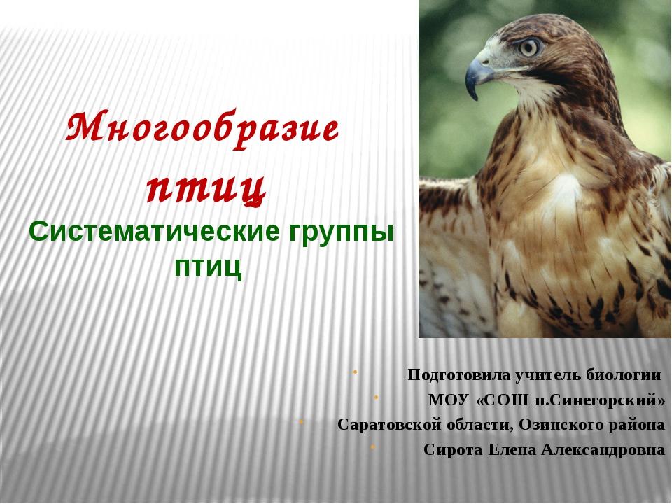 Многообразие птиц Систематические группы птиц Подготовила учитель биологии МО...