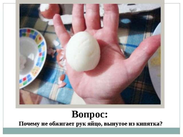 сдавила яйца фото