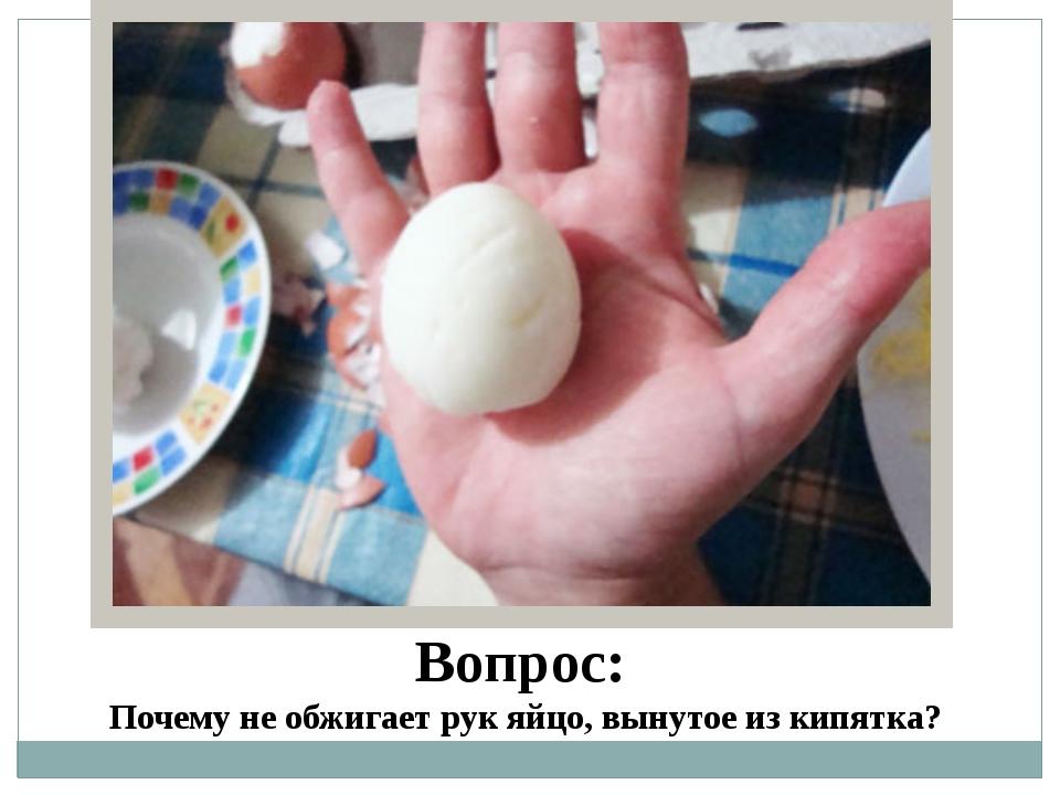 Что делать если муж ошпарил яйца фото 5 фотография