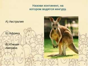 Назови континент, на котором водятся кенгуру. А) Австралия Б) Африка В) Южная