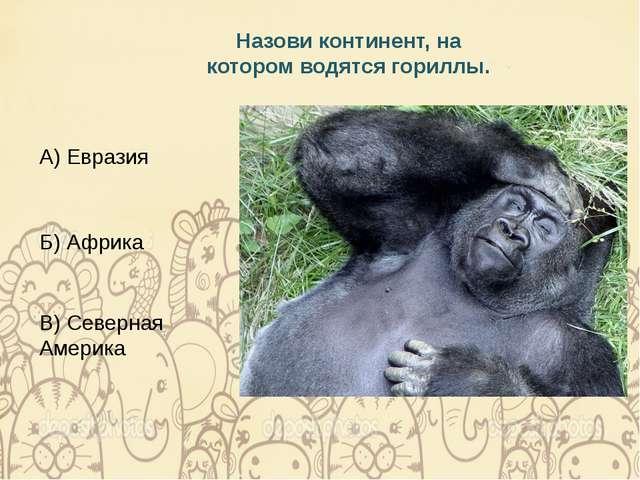 Назови континент, на котором водятся гориллы. А) Евразия Б) Африка В) Северна...