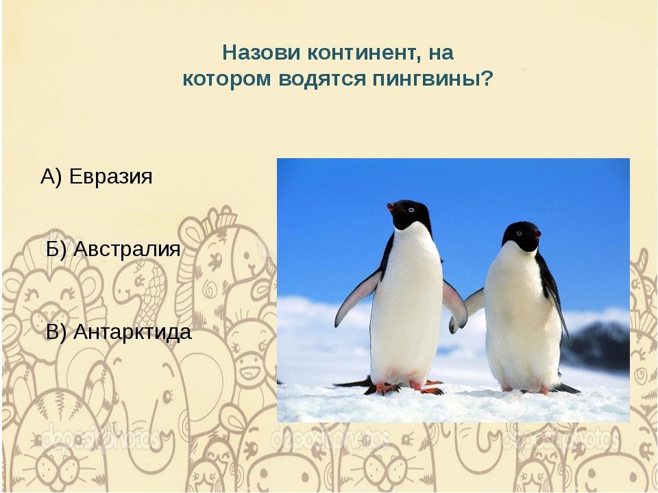 Назови континент, на котором водятся пингвины? А) Евразия Б) Австралия В) Ант...