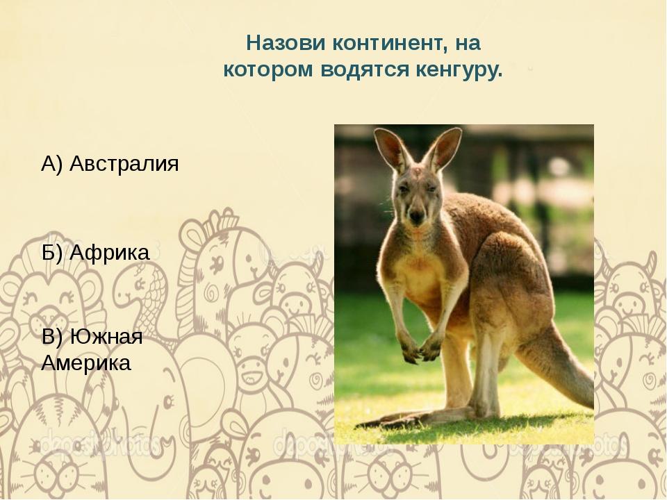 Назови континент, на котором водятся кенгуру. А) Австралия Б) Африка В) Южная...