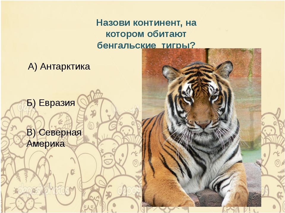 Назови континент, на котором обитают бенгальские тигры? Б) Евразия А) Антаркт...