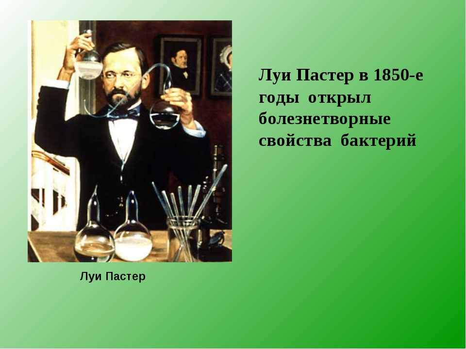 Луи Пастер в 1850-е годы открыл болезнетворные свойства бактерий Луи Пастер