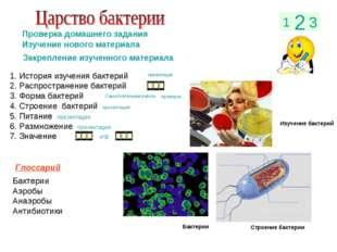 1 2 3 Проверка домашнего задания Изучение нового материала Закрепление изучен