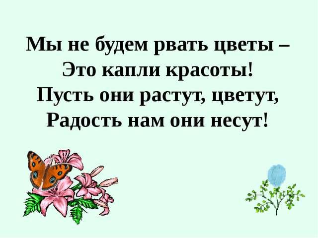 Мы не будем рвать цветы – Это капли красоты! Пусть они растут, цветут, Радост...