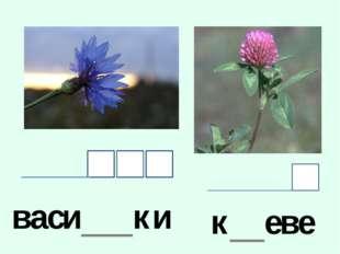 васи___ки к__еве__